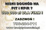 MASZ NISKI DOCHÓD Z PIT-u i KPiR ? ZADZWOŃ ! kredyt DLA FIRM DO 300 TYS.